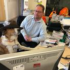 Ilfracombe newshound Ragamuffin meets the Gazette's Tony Gussin. Picture: Matt Smart