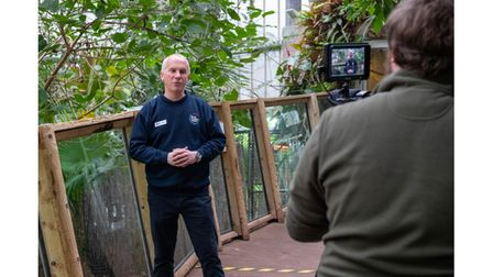 Picture of Paignton Zoo worker giving video interview