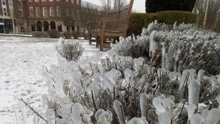 Ice and snow in Welwyn Garden City
