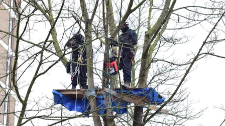 Technicians dismantle the tree platforms as protesters are evicted from Highbury Corner