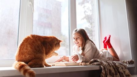 Child and ginger cat on windowsill over a radiator