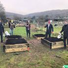 Rotarians and volunteers from SPACE charity working on the allotment in Cheddar.