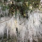 Judith Steward took this photo in Hemingford Grey of icicles, which formed after the road was flooded.