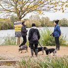 Fairlop Waters Country Park December 2020