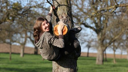 Woman climbing tree with cat