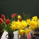 Supermarket daffodils and tulips brighten up Ruth's home during lockdown