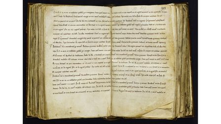 Picture of the Exon Domesday manuscript