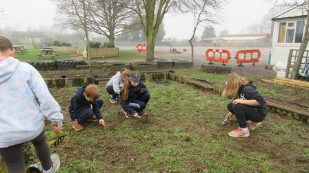 Children plant fruit trees in the grounds of Cliff Lane Primary School, Ipswich