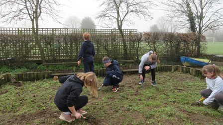 The Seedlings has been started at Ipswich's Cliff Lane Primary School