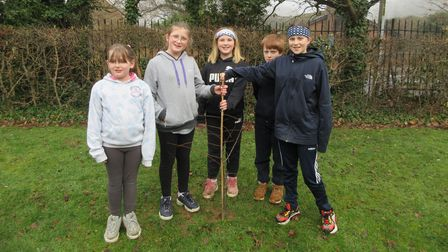 The new Seedlings gardening club at Ipswich's Cliff Lane Primary Schools aims to 'promote the idea that children's health and happiness can be enhanced by being outside and active in nature during lockdown'.