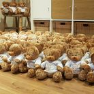 preston teddy bears