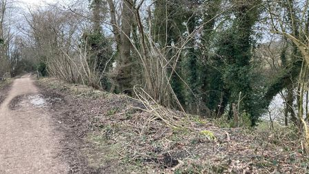 Ayot Greenway from Welwyn Garden City to Wheathampstead
