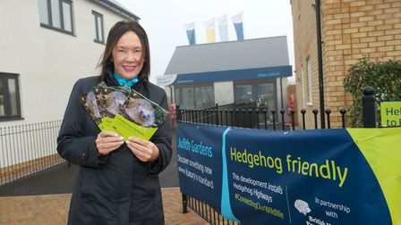 Helen Warby at the hedgehog highway in Sawtry
