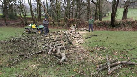 Sidmouth Golf Club clearing the trees