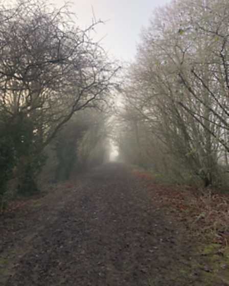 Tilly Brown, aged 13, took this image in Somersham.