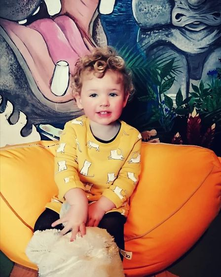 Freya Hipperson, 20 months, with her jungle mural painted by her mum Rose Weaver.