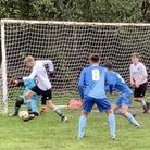 Welwyn Pegasus U18 Royals in action