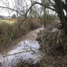 Tydd St Giles ditch
