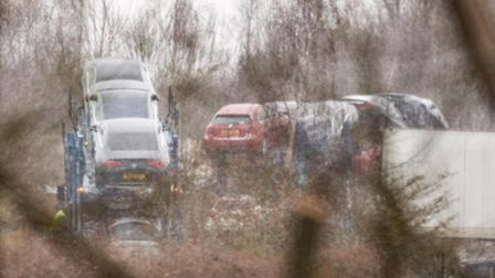 Vehicle movement and storage is taking place on the former car park at Butterfly World.