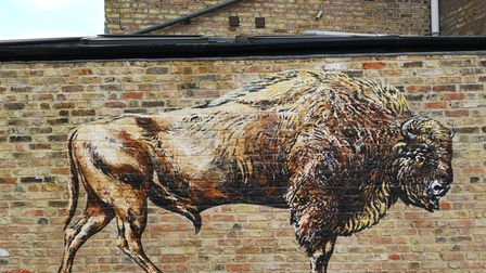 European Bison by ATM painted for last September's London Mural Festival