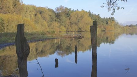 Rostherne Mere Early Morning