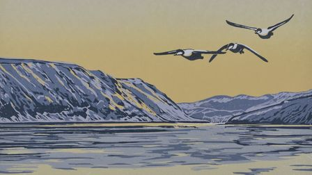 A design of three birds flying over a large lake with mountains in the background.