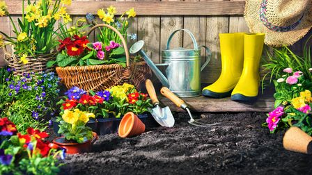 Now is the perfect time to get ahead on all those spring jobs in the garden, so that once we can welcome visitors back...