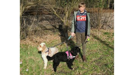 A dog walk for a 14th Lowestoft troop member as part of the Scouts Lands End to John O' Groats Virtual Challenge.