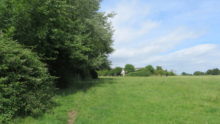Plans for 120 homes on field next to former animal testing site in Houghton