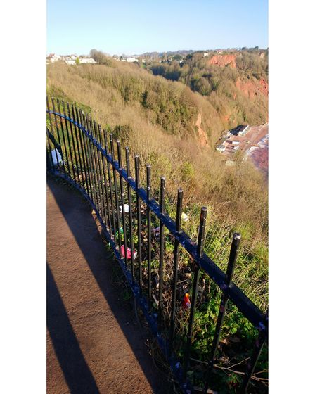 Litter on Babbacombe Downs, Torquay