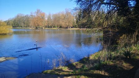 Verulamium Lake has burst its banks due to excessive winter rainfall.