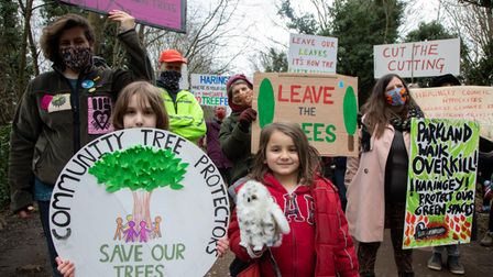 Protest against the felling of trees along Parkland Walk