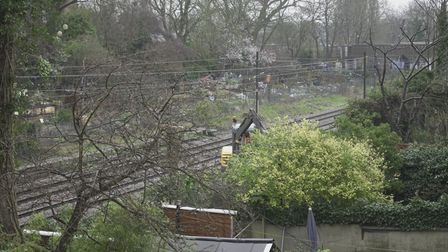 Network Rail are in the process of clearing foliage, bushes and trees from the Overground line near Hampstead Heath.