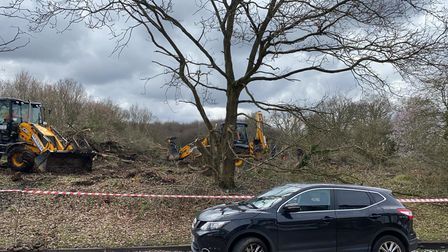 Woodland clearance at Copthorne Gardens in Hornchurch