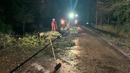 Police were forced to closeDowgateRoad in Leverington this morning at around 4am after a tree fell down in heavy winds...