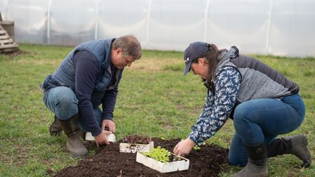 Jo Hull and Dave Carney show us how to make an easy no dig garden. Step 4- Planting. Picture: SAR