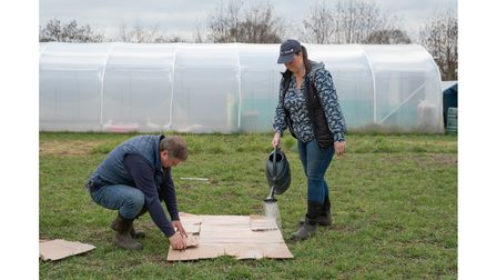 Jo Hull and Dave Carney show us how to make an easy no dig garden. Step 1: Lay some cardboard and da