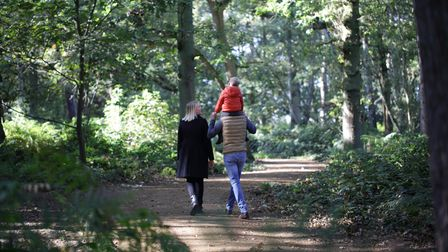 Enjoy a walk on a woodland trail with mum this Mother's Day.