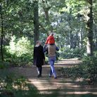 Enjoy a walk on a woodland trailwith mum this Mother's Day.