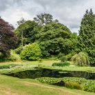 The Wilderness Pond in the gardens at National Trust property Arlington Court, Devon.