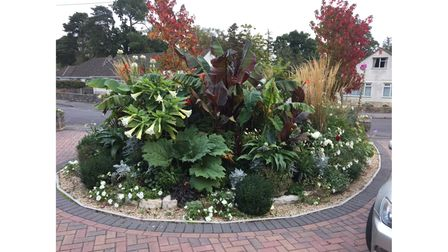 Exotic planting at The Pines in Ferndown, Dorset
