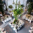 An overhead view of tables set with flower trees and fruit trees foe a secret garden themed dinner