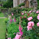Stowell Park's upper terrace is pure romance, with abundant roses and peonies