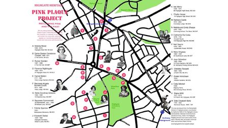 The Pink Plaque Project map