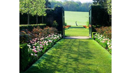 Pretty pink tulips line a path at Pashley Manor