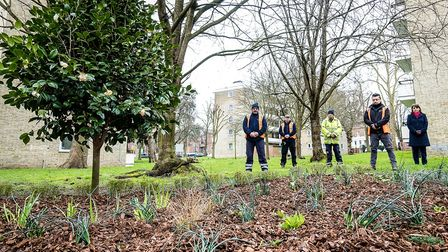 Islington Council staff with a camellia planted to mark the one year anniversary of the Covid-19 lockdown