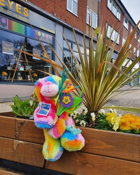 Anna Bassil - one of the members of the 'Rainbow Army' - has been hiding Rainbow Ted across St Albans district