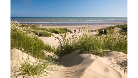 Sandy dunes with wild grasses and the sea in the background at Camber Sands in Sussex