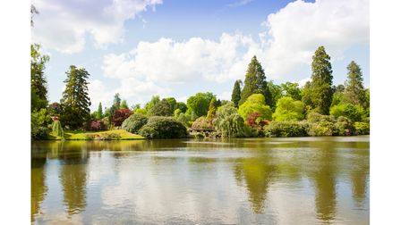 A view across the water at Sheffield Park and Garden in Sussex
