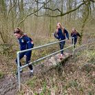 Three teenage girls walking across a log in forest wearing blue tracksuits